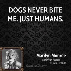 Dogs never bite me. Just humans.