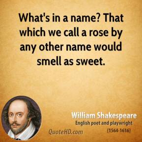 What's in a name? That which we call a rose by any other name would smell as sweet.