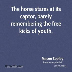 Mason Cooley - The horse stares at its captor, barely remembering the free kicks of youth.