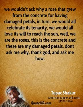 Tupac Shakur  - we wouldn't ask why a rose that grew from the concrete for having damaged petals, in turn, we would all celebrate its tenacity, we would all love its will to reach the sun, well, we are the roses, this is the concrete and these are my damaged petals, dont ask me why, thank god, and ask me how.