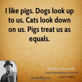 I like pigs. Dogs look up to us. Cats look down on us. Pigs treat us as equals.