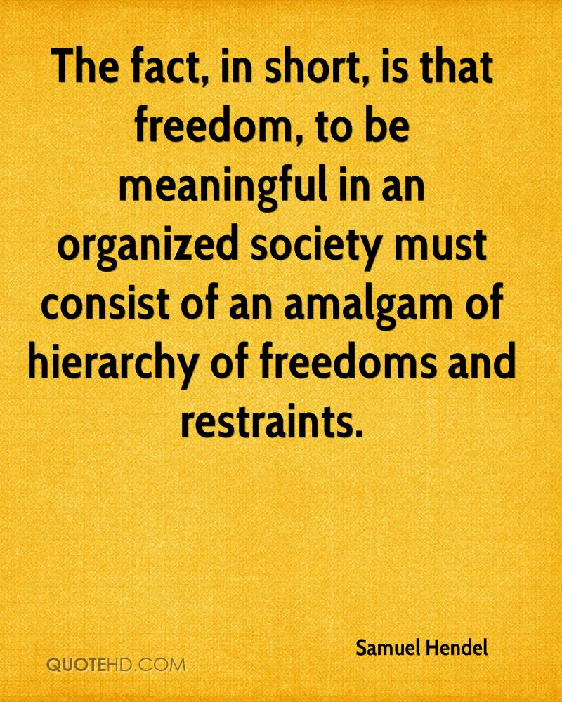 The fact, in short, is that freedom, to be meaningful in an organized society must consist of an amalgam of hierarchy of freedoms and restraints.