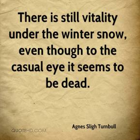Agnes Sligh Turnbull - There is still vitality under the winter snow, even though to the casual eye it seems to be dead.