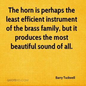 Barry Tuckwell - The horn is perhaps the least efficient instrument of the brass family, but it produces the most beautiful sound of all.