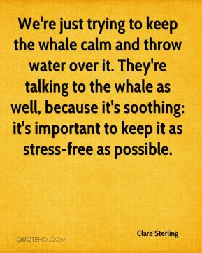 Clare Sterling - We're just trying to keep the whale calm and throw water over it. They're talking to the whale as well, because it's soothing: it's important to keep it as stress-free as possible.