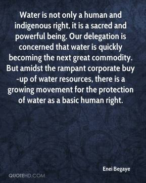 Enei Begaye - Water is not only a human and indigenous right, it is a sacred and powerful being. Our delegation is concerned that water is quickly becoming the next great commodity. But amidst the rampant corporate buy-up of water resources, there is a growing movement for the protection of water as a basic human right.