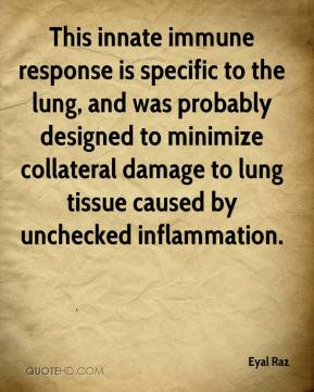 Eyal Raz - This innate immune response is specific to the lung, and was probably designed to minimize collateral damage to lung tissue caused by unchecked inflammation.