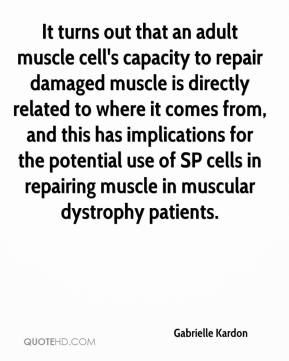 Gabrielle Kardon - It turns out that an adult muscle cell's capacity to repair damaged muscle is directly related to where it comes from, and this has implications for the potential use of SP cells in repairing muscle in muscular dystrophy patients.