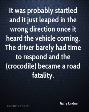 Garry Lindner - It was probably startled and it just leaped in the wrong direction once it heard the vehicle coming. The driver barely had time to respond and the (crocodile) became a road fatality.