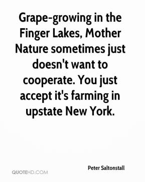 Peter Saltonstall  - Grape-growing in the Finger Lakes, Mother Nature sometimes just doesn't want to cooperate. You just accept it's farming in upstate New York.