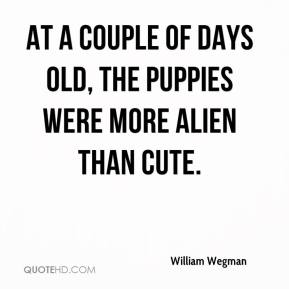 William Wegman  - At a couple of days old, the puppies were more alien than cute.