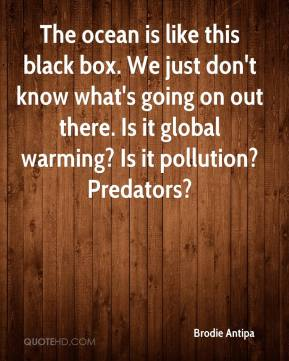 Brodie Antipa - The ocean is like this black box. We just don't know what's going on out there. Is it global warming? Is it pollution? Predators?