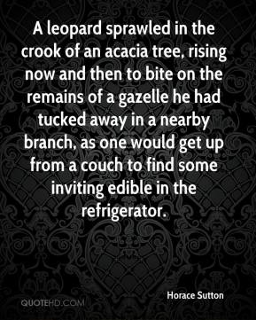 Horace Sutton - A leopard sprawled in the crook of an acacia tree, rising now and then to bite on the remains of a gazelle he had tucked away in a nearby branch, as one would get up from a couch to find some inviting edible in the refrigerator.