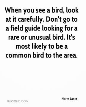 Norm Lantz  - When you see a bird, look at it carefully. Don't go to a field guide looking for a rare or unusual bird. It's most likely to be a common bird to the area.