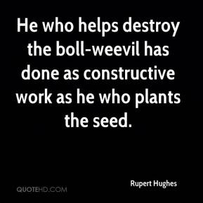 Rupert Hughes  - He who helps destroy the boll-weevil has done as constructive work as he who plants the seed.