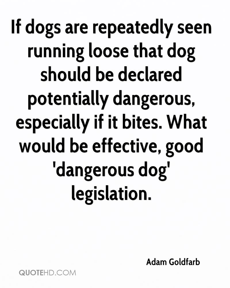 adam goldfarb quotes quotehd adam goldfarb quotes 0 if dogs are repeatedly seen running loose that dog should be declared potentially dangerous especially