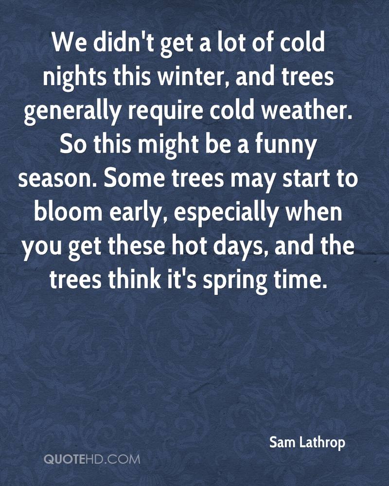 We didn't get a lot of cold nights this winter, and trees generally require cold weather. So this might be a funny season. Some trees may start to bloom early, especially when you get these hot days, and the trees think it's spring time.