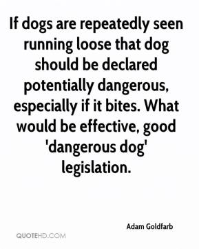 If dogs are repeatedly seen running loose that dog should be declared potentially dangerous, especially if it bites. What would be effective, good 'dangerous dog' legislation.