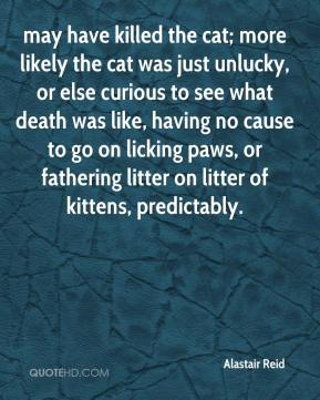 Alastair Reid - may have killed the cat; more likely the cat was just unlucky, or else curious to see what death was like, having no cause to go on licking paws, or fathering litter on litter of kittens, predictably.
