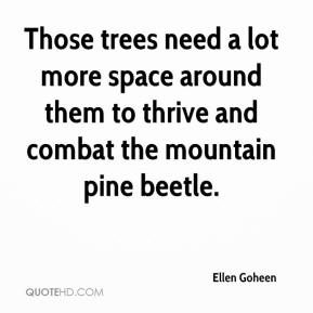 Ellen Goheen - Those trees need a lot more space around them to thrive and combat the mountain pine beetle.