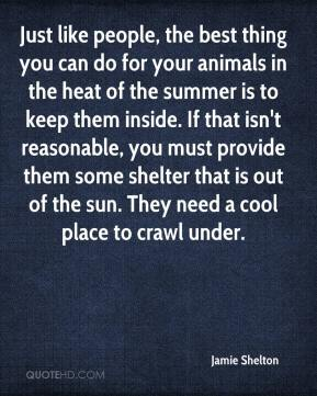 Just like people, the best thing you can do for your animals in the heat of the summer is to keep them inside. If that isn't reasonable, you must provide them some shelter that is out of the sun. They need a cool place to crawl under.