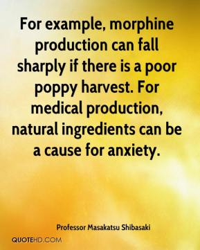Professor Masakatsu Shibasaki  - For example, morphine production can fall sharply if there is a poor poppy harvest. For medical production, natural ingredients can be a cause for anxiety.