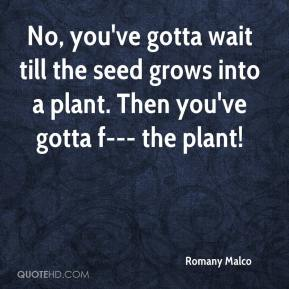 Romany Malco  - No, you've gotta wait till the seed grows into a plant. Then you've gotta f--- the plant!