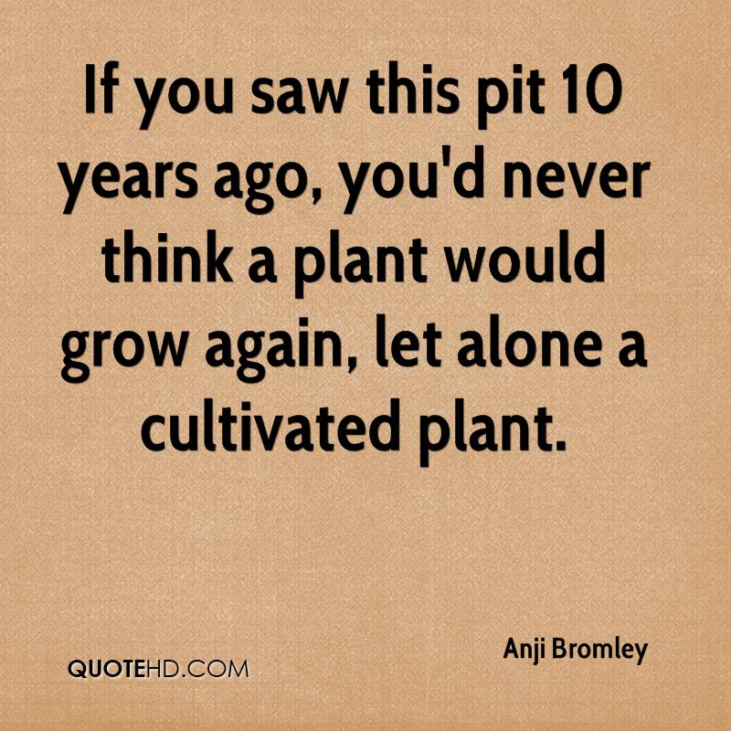 If you saw this pit 10 years ago, you'd never think a plant would grow again, let alone a cultivated plant.