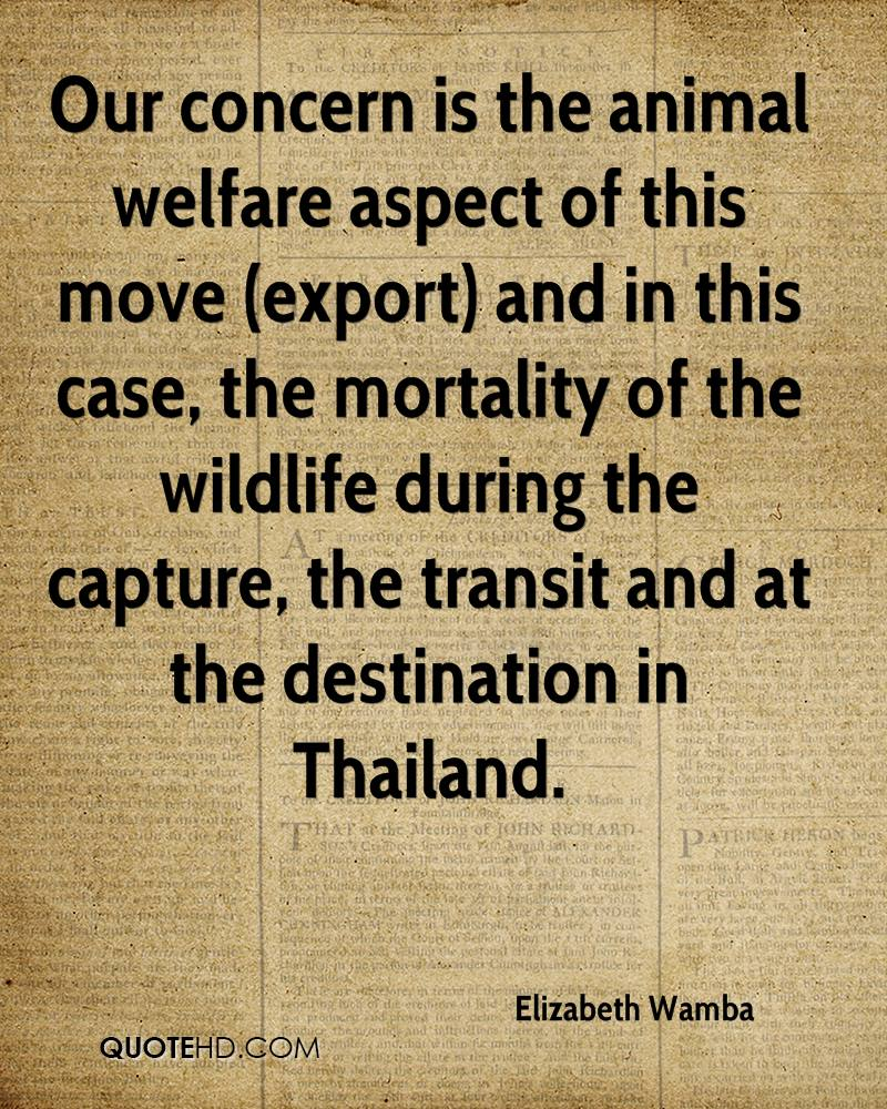 Our concern is the animal welfare aspect of this move (export) and in this case, the mortality of the wildlife during the capture, the transit and at the destination in Thailand.