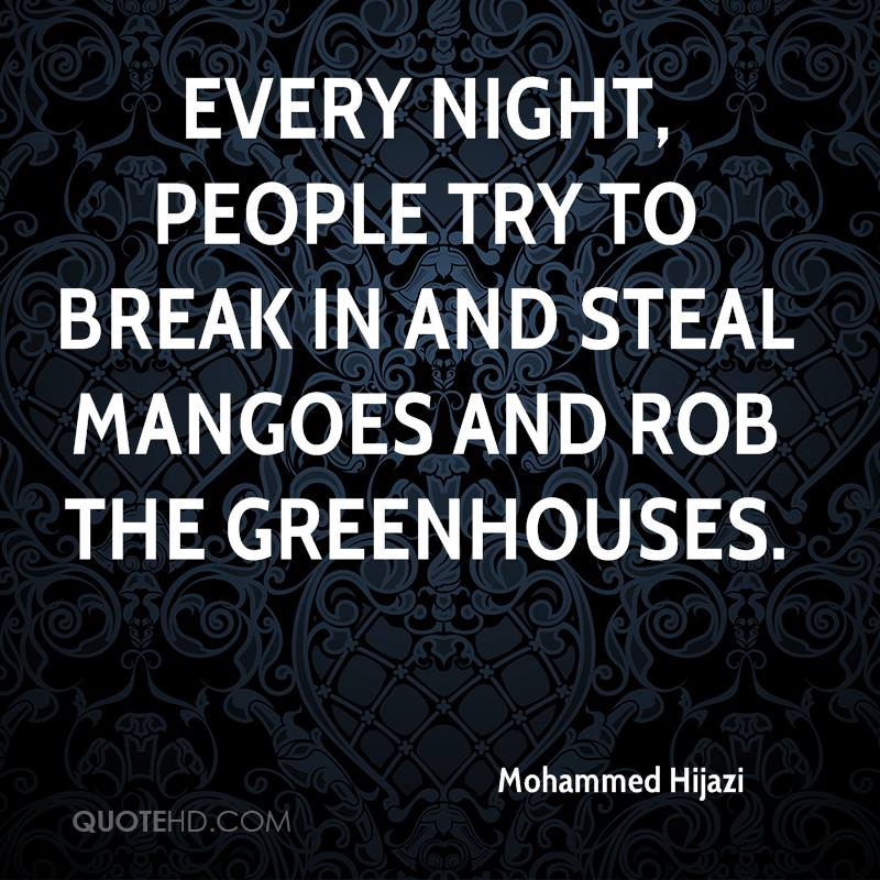 Every night, people try to break in and steal mangoes and rob the greenhouses.