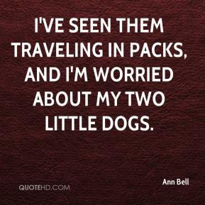 Ann Bell - I've seen them traveling in packs, and I'm worried about my two little dogs.