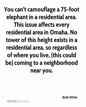 Beth White - You can't camouflage a 75-foot elephant in a residential area. This issue affects every residential area in Omaha. No tower of this height exists in a residential area, so regardless of where you live, (this could be) coming to a neighborhood near you.