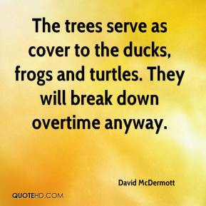David McDermott - The trees serve as cover to the ducks, frogs and turtles. They will break down overtime anyway.
