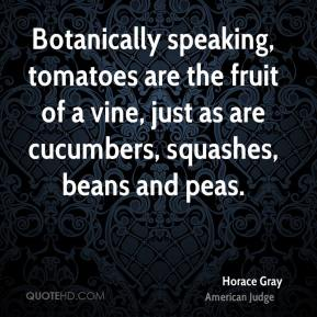 Horace Gray - Botanically speaking, tomatoes are the fruit of a vine, just as are cucumbers, squashes, beans and peas.
