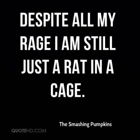 The Smashing Pumpkins  - Despite all my rage I am still just a rat in a cage.