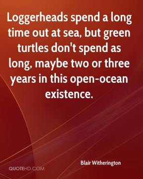 Blair Witherington - Loggerheads spend a long time out at sea, but green turtles don't spend as long, maybe two or three years in this open-ocean existence.