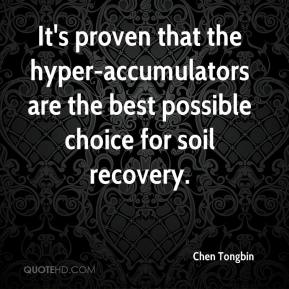 Chen Tongbin - It's proven that the hyper-accumulators are the best possible choice for soil recovery.