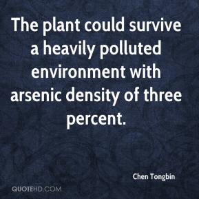 Chen Tongbin - The plant could survive a heavily polluted environment with arsenic density of three percent.