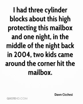 Dawn Cicchesi - I had three cylinder blocks about this high protecting this mailbox and one night, in the middle of the night back in 2004, two kids came around the corner hit the mailbox.