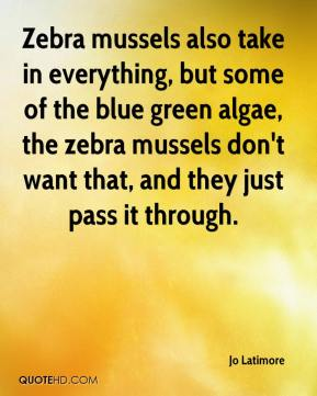Jo Latimore  - Zebra mussels also take in everything, but some of the blue green algae, the zebra mussels don't want that, and they just pass it through.