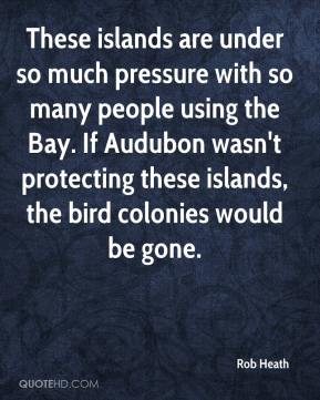 Rob Heath  - These islands are under so much pressure with so many people using the Bay. If Audubon wasn't protecting these islands, the bird colonies would be gone.