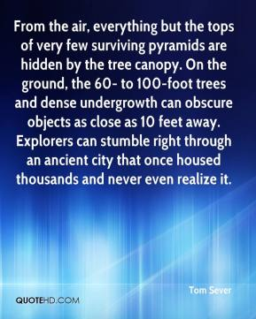 Tom Sever  - From the air, everything but the tops of very few surviving pyramids are hidden by the tree canopy. On the ground, the 60- to 100-foot trees and dense undergrowth can obscure objects as close as 10 feet away. Explorers can stumble right through an ancient city that once housed thousands and never even realize it.