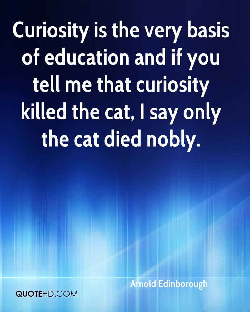Curiosity is the very basis of education and if you tell me that curiosity killed the cat, I say only the cat died nobly.