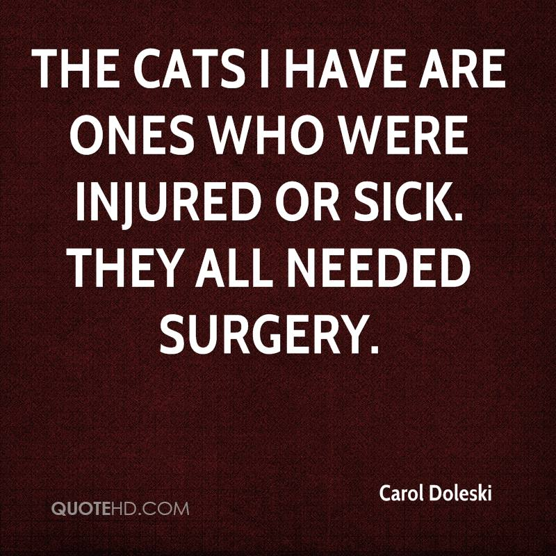 The cats I have are ones who were injured or sick. They all needed surgery.