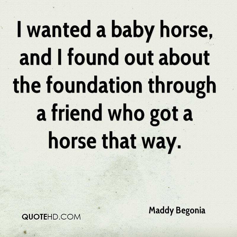 I wanted a baby horse, and I found out about the foundation through a friend who got a horse that way.