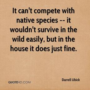 Darrell Ubick - It can't compete with native species -- it wouldn't survive in the wild easily, but in the house it does just fine.