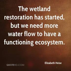 Elizabeth Heise - The wetland restoration has started, but we need more water flow to have a functioning ecosystem.