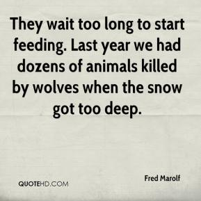 Fred Marolf - They wait too long to start feeding. Last year we had dozens of animals killed by wolves when the snow got too deep.