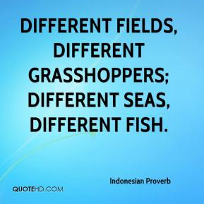 Indonesian Proverb - Different fields, different grasshoppers; different seas, different fish.