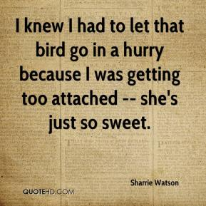 Sharrie Watson  - I knew I had to let that bird go in a hurry because I was getting too attached -- she's just so sweet.
